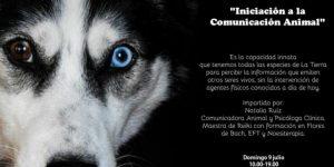 comunicación animal